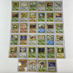 Complete WOTC Jungle Pokemon Card Set All 64/64 In Ultra Pro Top Loaders/Box