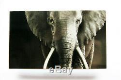 SÜDAFRIKA Set Big Five Elefant Silber PP inkl. Box und Zertifikat 2019 TOP